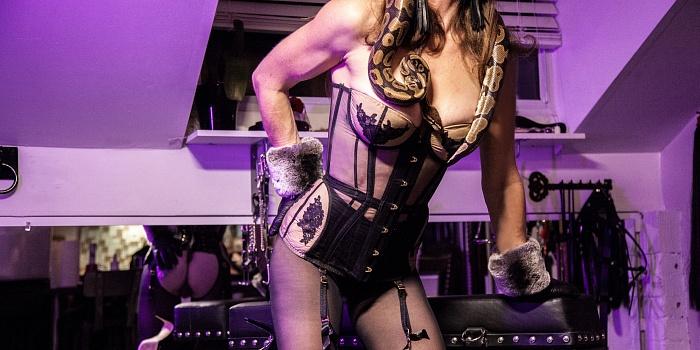 Dominatrix Violet Mays's Cover Photo