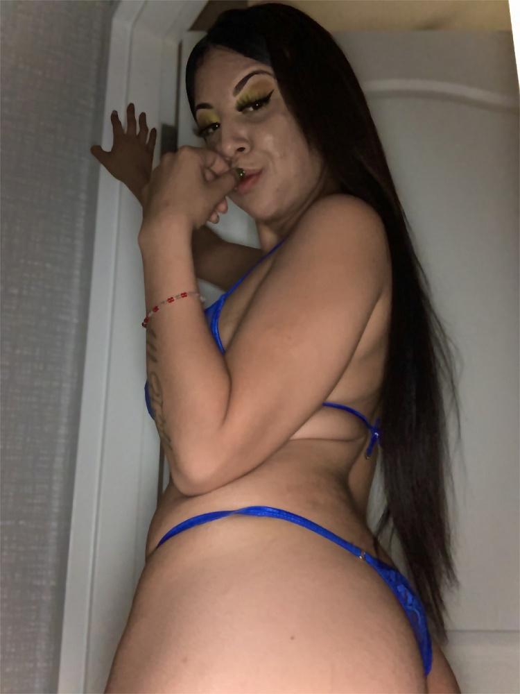 Jasmine sativa