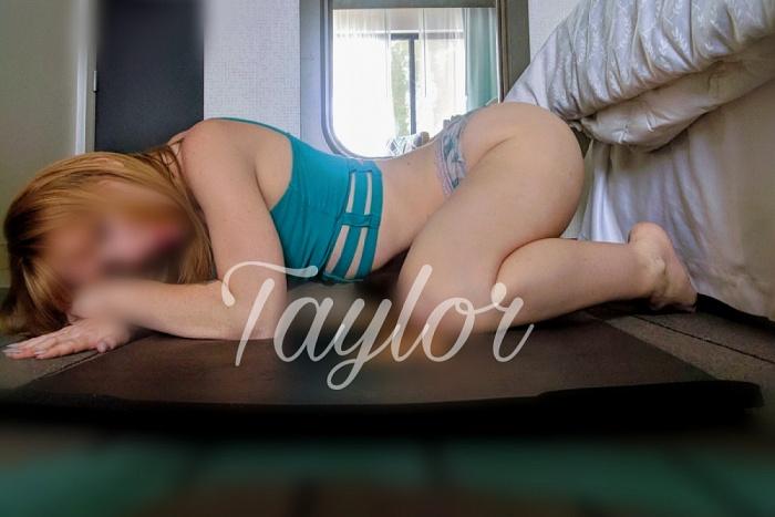 Taylor XO