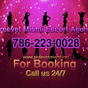 Preevet Miami Escort Agency's Avatar