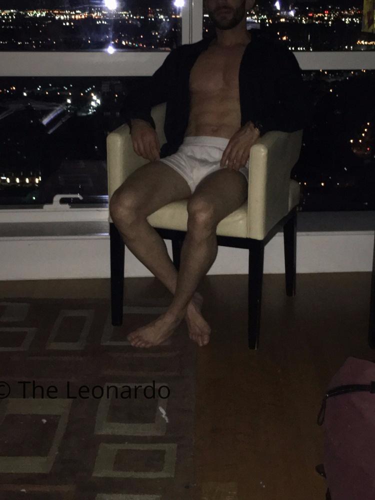 The-Leonardo