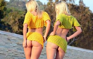 Palmer Twins