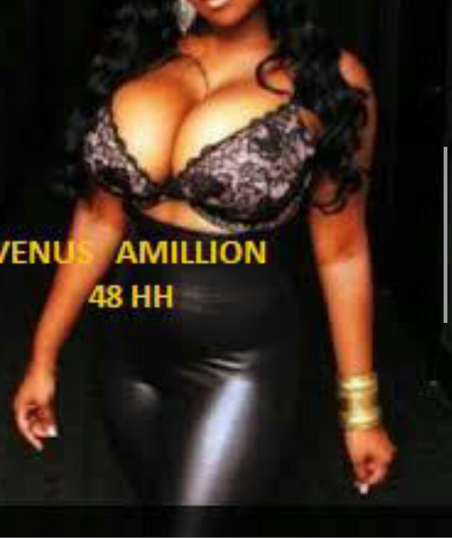 VenusAmillion
