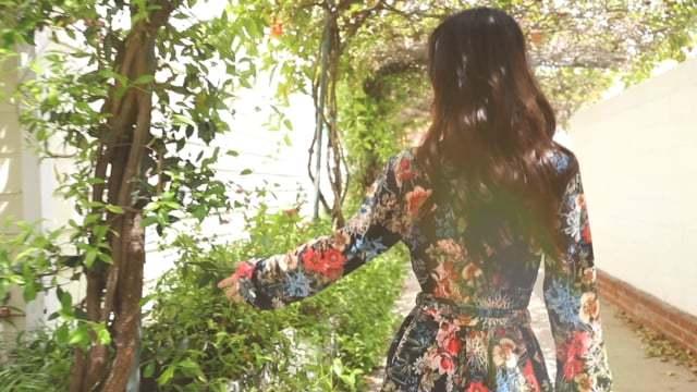 Ivy Spring